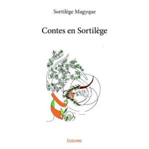 contes-en-sortilege-jeu-occasion-ludessimo-d-33-5269
