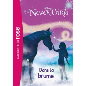 the-never-girls-jeu-occasion-ludessimo-d-33-5294